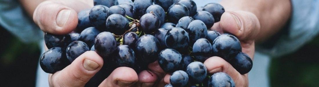 grapes(1)